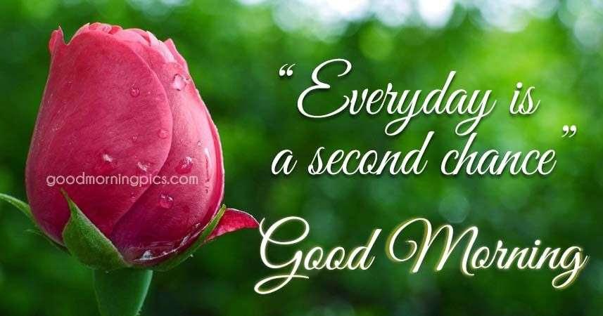 Motivational Quote For Good Morning Goodmorningpicscom