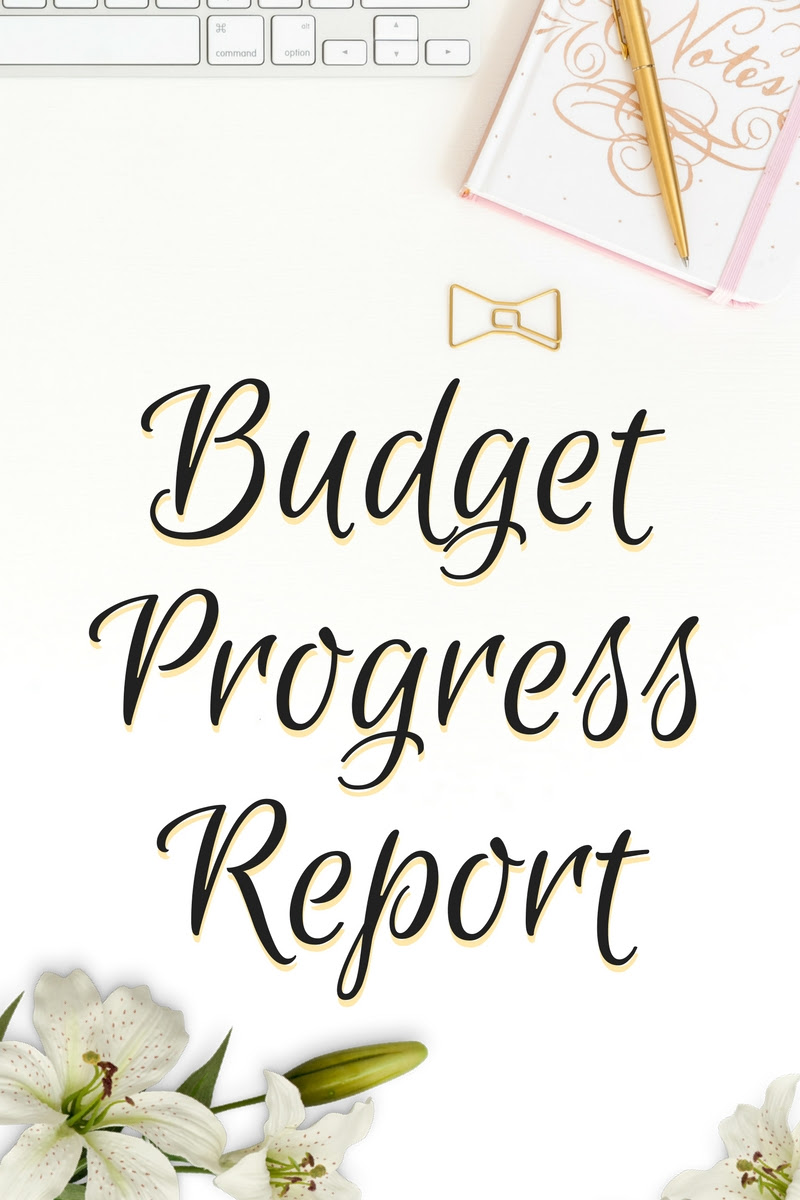 Budget Progress Report