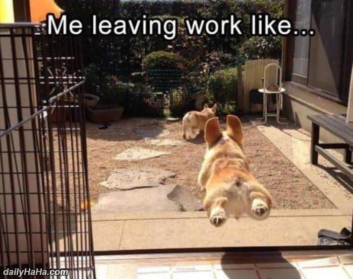 Me Leaving Work Like