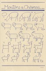 les animaux 19
