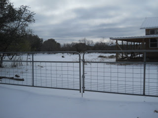 Sleet - View of House
