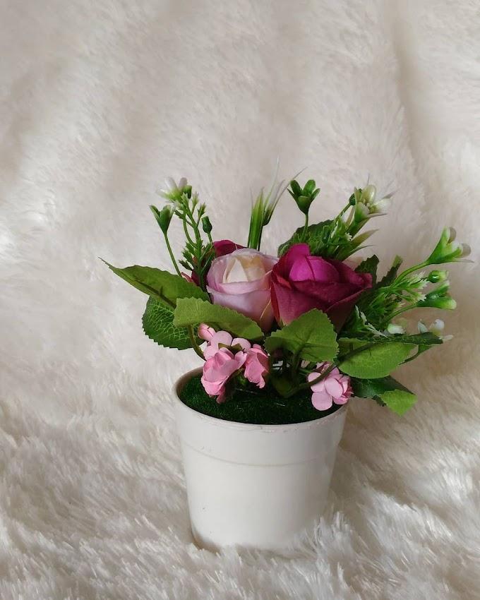 Pot Bunga Di Ruang Tamu   Ide Rumah Minimalis