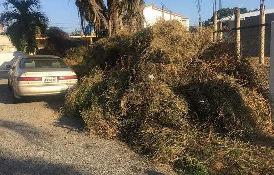 Insólito: Brigadas Ayuntamiento DNexigen soborno para recoger basura