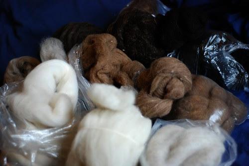 Rare breeds naturally coloured spinning fibre