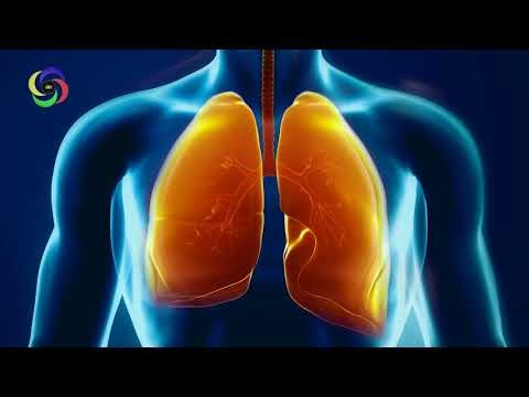 Frequency of Lungs 220 Hz | Monaural - Pure - Organ - Music For Treatment #RMBB