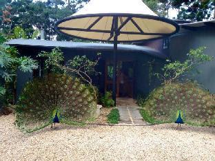 Azabu Guesthouse Byron Bay