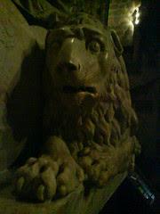 Bog-eyed lion