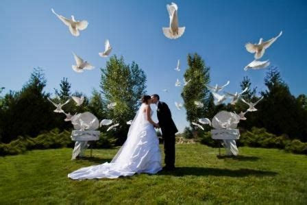 Releasing doves can be a gorgeous idea for your Wedding