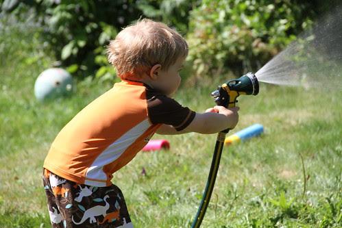 Feisty Gardener
