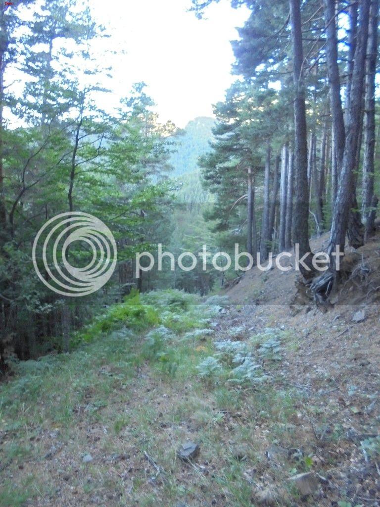 photo FORATON - BISAURIN 16-08-15 005_zpso4vepo34.jpg