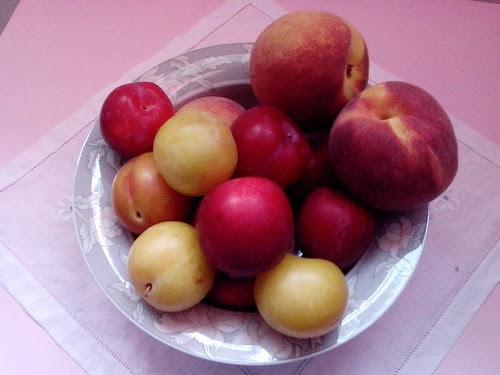 Un angolo di frutti di agosto by Ylbert Durishti