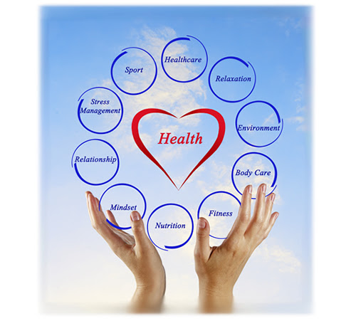 Image result for Why is Holistic Health Care so Important?