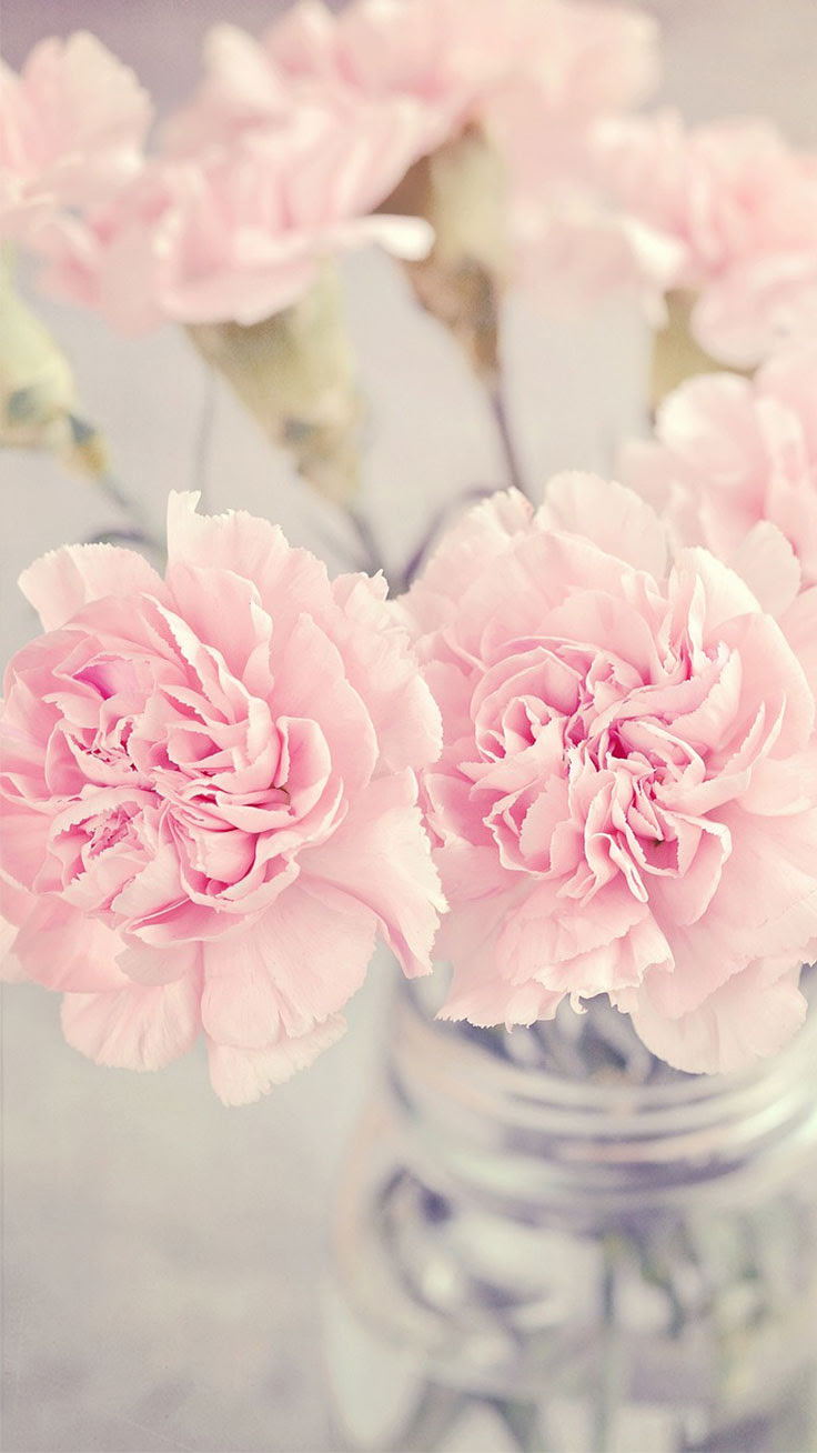 Pink Peonies iPhone Wallpaper Collection | Preppy Wallpapers