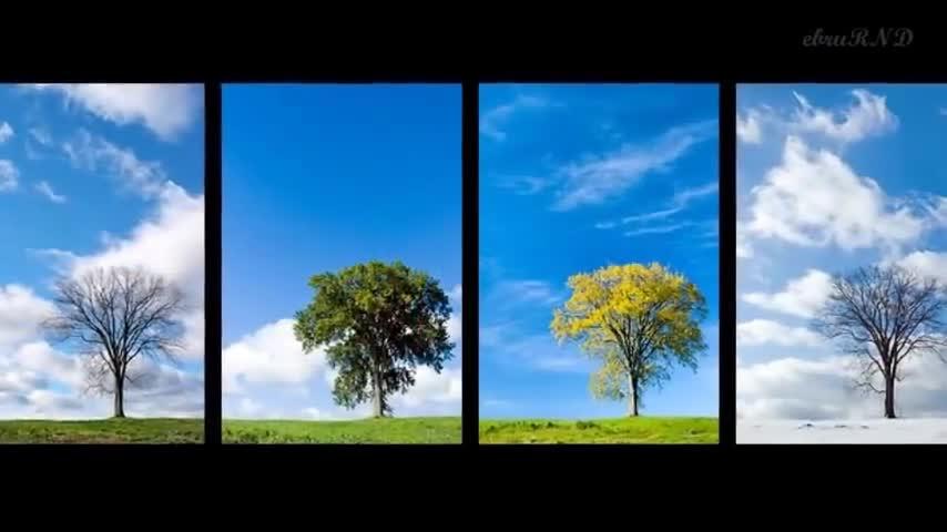 Mevsimler şarkısı Izle Video Eğitim Bilişim Ağı