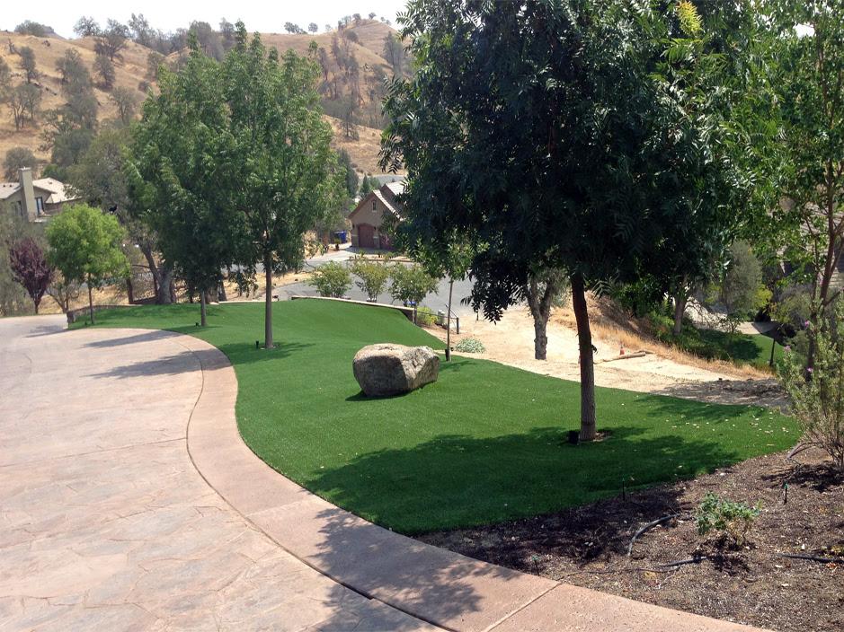 Turf Grass Freeport Texas Backyard Playground Front Yard Landscaping Ideas