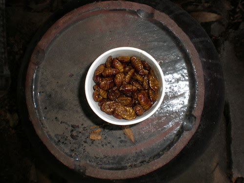 Roasted silkworms to eat, Jeondeungsa, Ganghwa Island