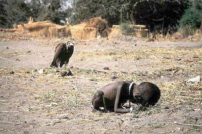 En la imagen puede verse la figura esquelética de una pequeña niña, totalmente desnutrida, recostándose sobre la tierra, agotada por el hambre, y a punto de morir, mientras que en un segundo plano, la figura negra expectante de un buitre se encuentra acechando y esperando el momento preciso de la muerte de la niña.