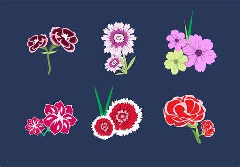 Carnation Bouquet Vectors   Download Free Vector Art