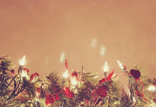 christmas light love
