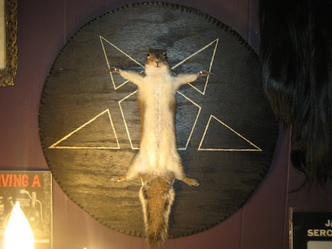 Satanic Squirrel Ritual taxidermy