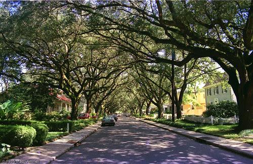New Orleans, LA_1986_August_140