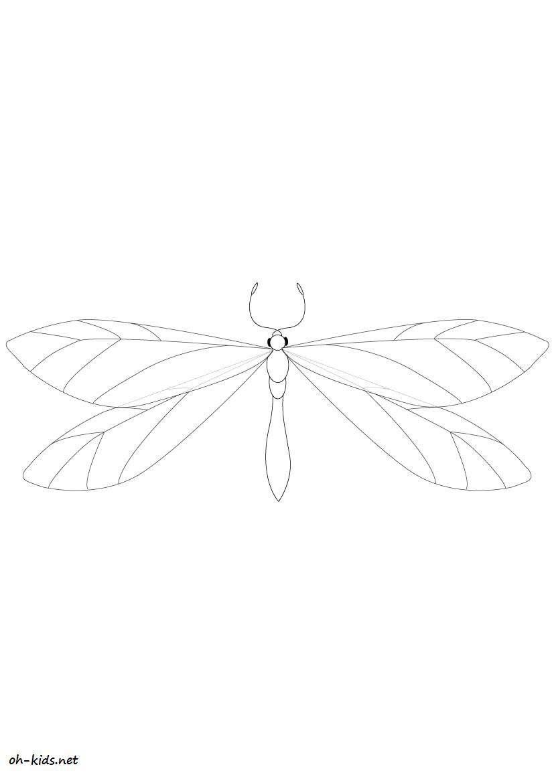 Coloriage libellule gratuit  imprimer et colorier Dessin 452