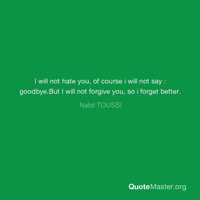 I Will Not Hate You Of Course I Will Not Say Goodbyebut I Will