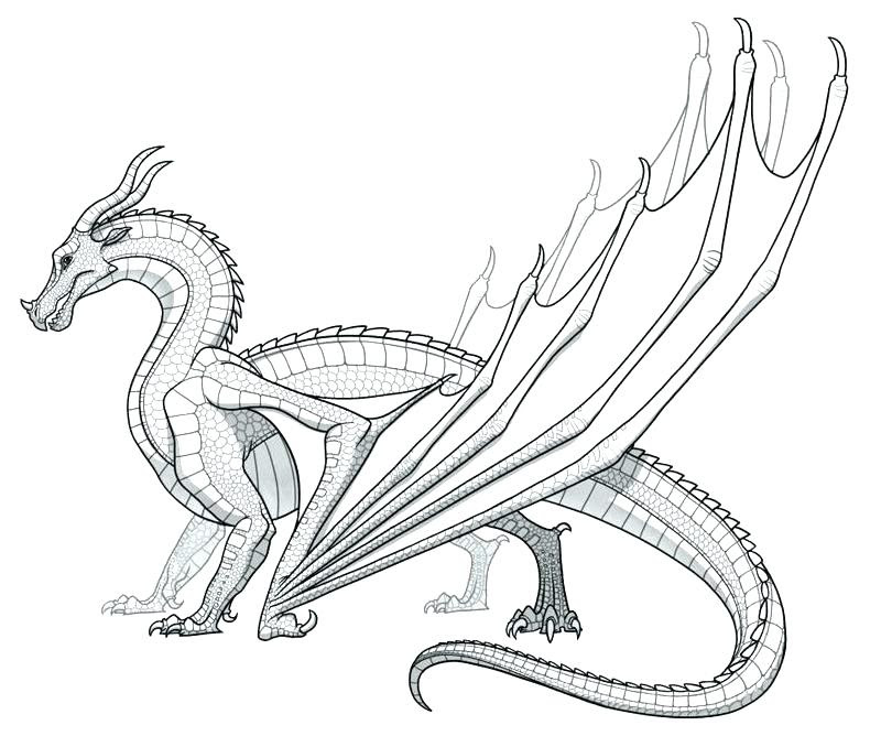 42 Dragon Coloring Book Pages Printable Picture HD
