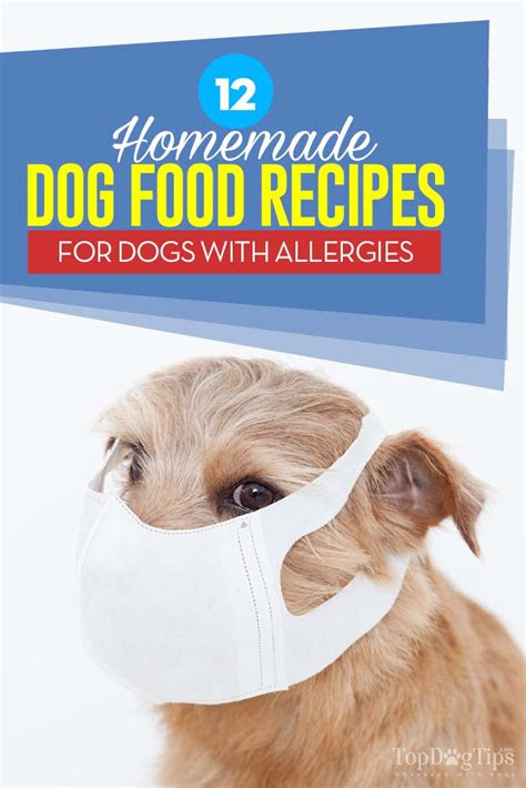 homemade dog food  allergies recipes