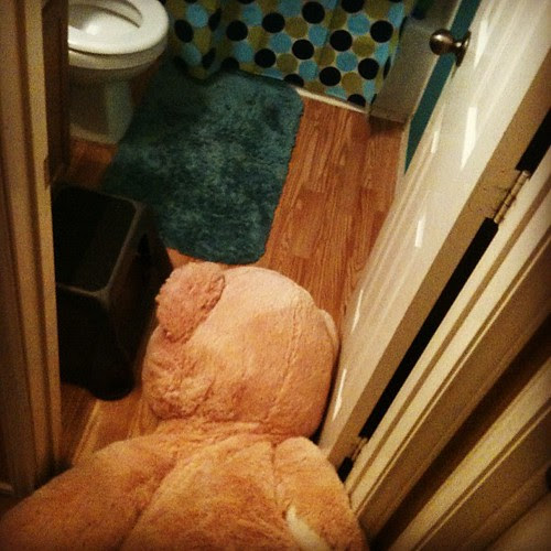 Apparently, Giant Bear had a rough night after we went to bed. by seanclaes