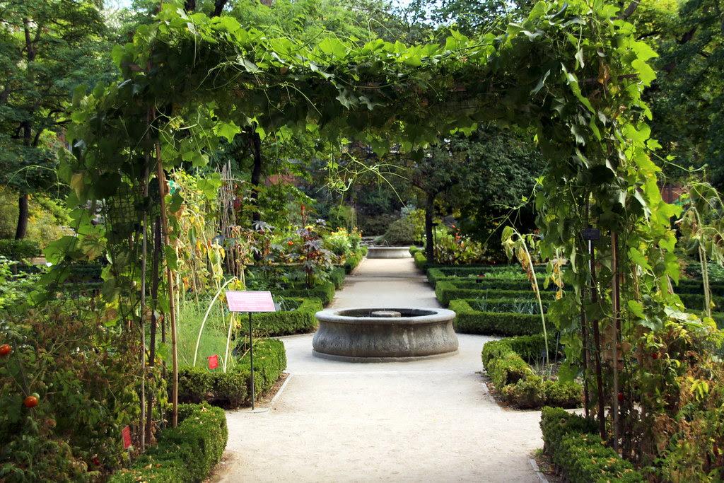 Jardín botánico de Madrid en septiemble