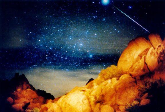 APOD: November 18, 1999 - A Sirius Leonid Meteor