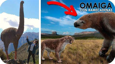 animales extintos  podrian volver  la vida youtube