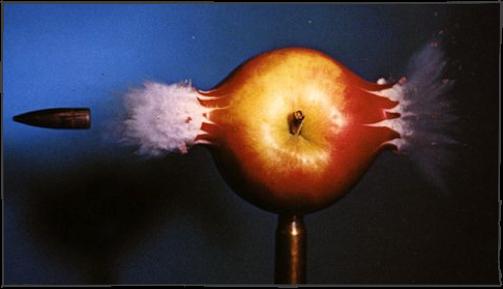 Apple-Shot