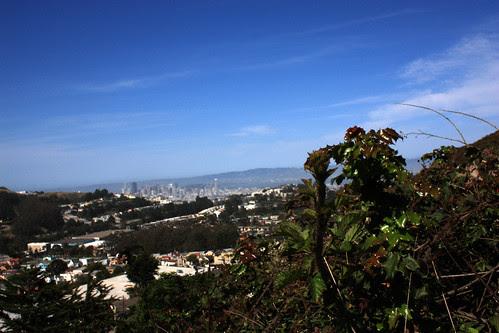 San Francisco from Mt Davidson
