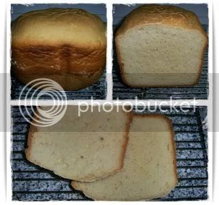 Pão de Sanduiche MFP3