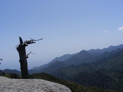 太鼓岩から望む