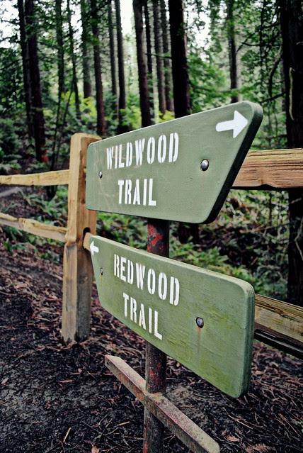 Wildwood Trail jnctn Redwood Trail - Hoyt Arboretum - Portland, Oregon