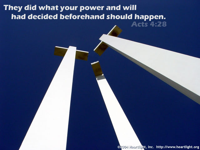 Inspirational illustration of Acts 4:28