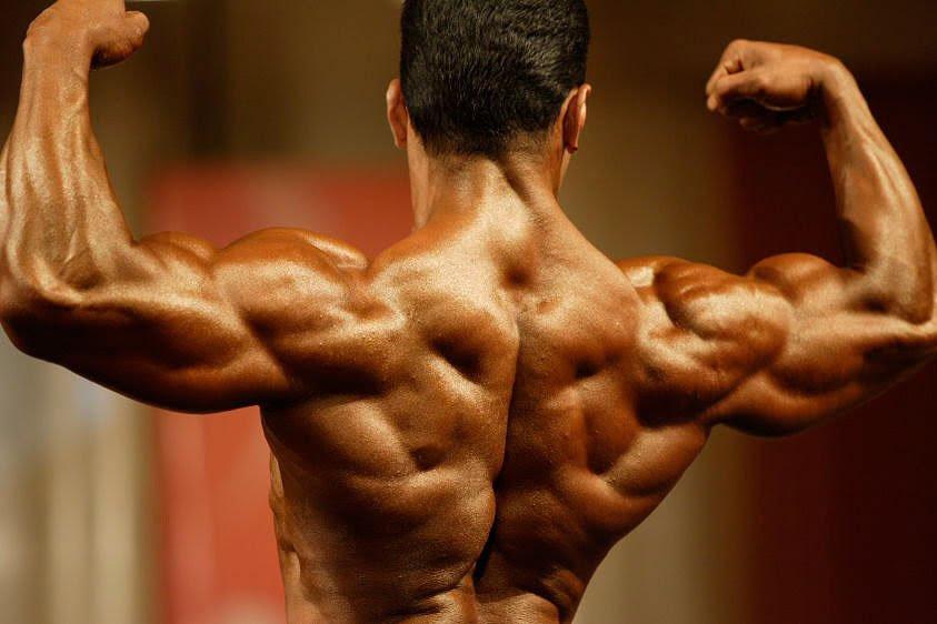 Bodybuilder Back Muscles