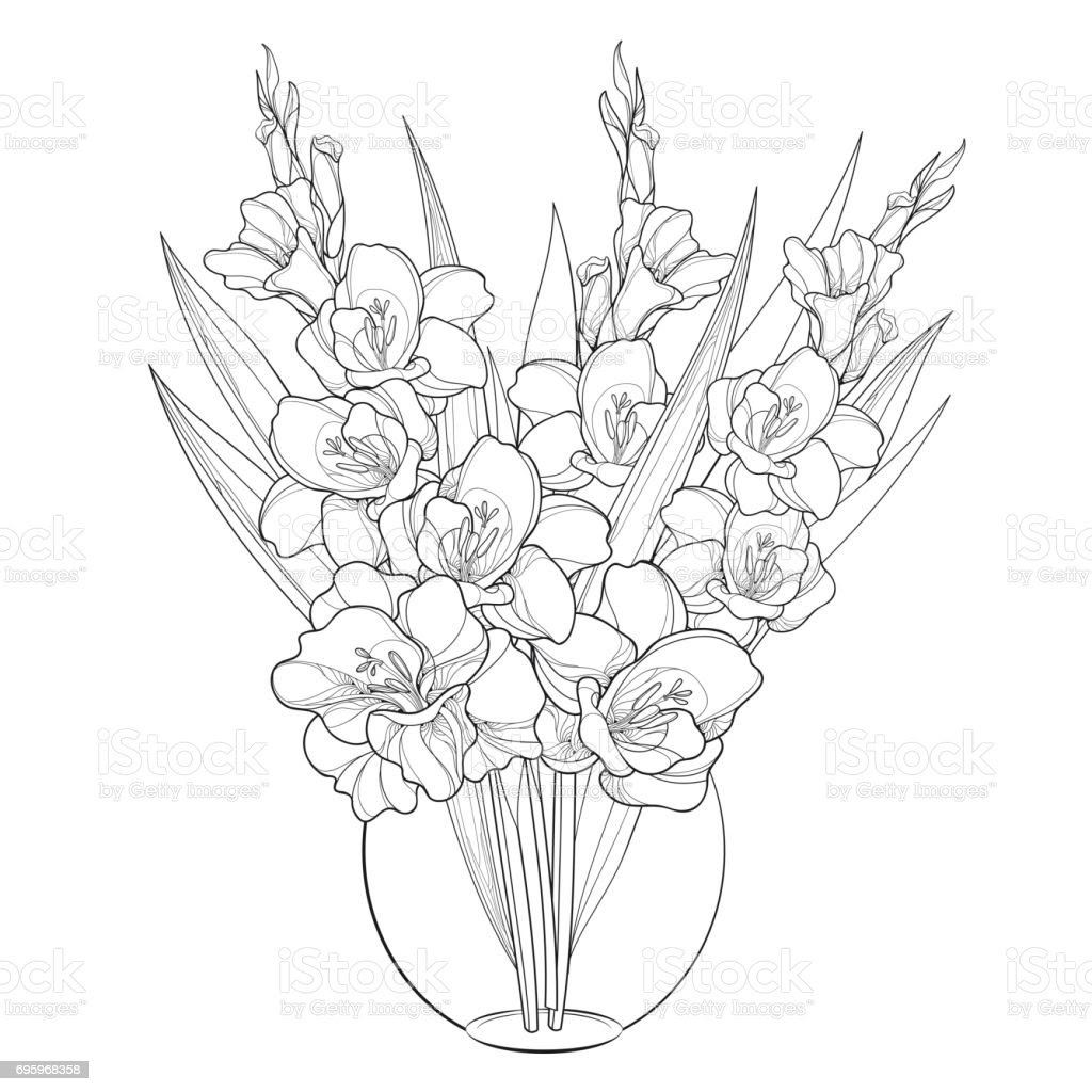 Vector Bouquet With Gladiolus Or Sword Lily In Round Vase Isolated On White Background Stock Jeffersonclan