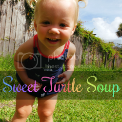 Sweet Turtle Soup