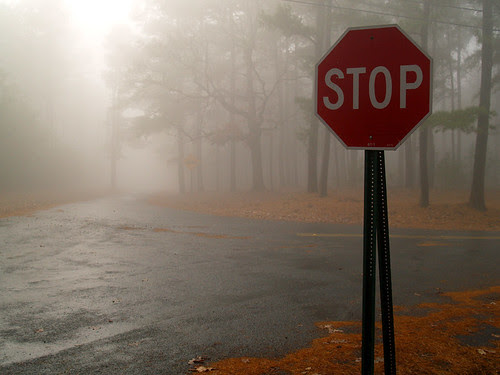 stop in the name of fog