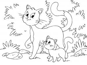 Dibujos De Gatos Para Colorear Paracolorearnet