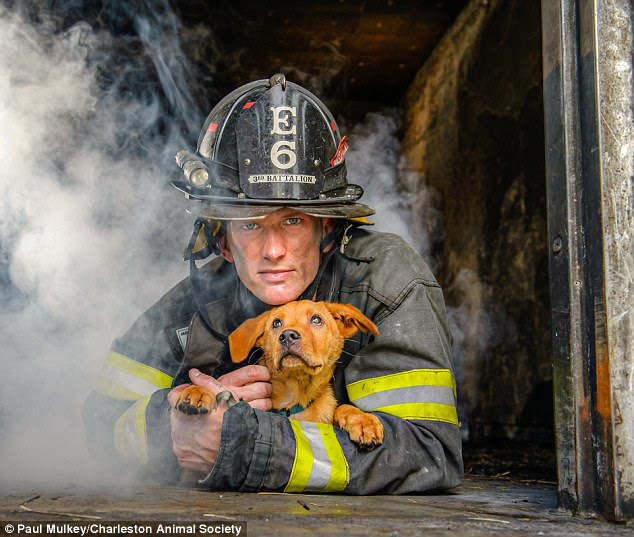 Good cause: Charleston Animal Society released the calendar in association with The Fire Department of Charleston, South Carolina, to benefit its Toby's Fund, which treats injured, abused and abandoned animals
