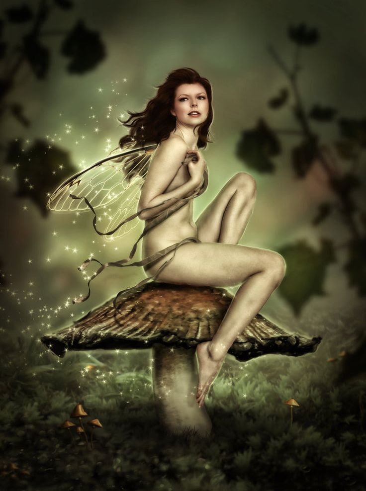 Mushroom Fairy 2 by brandrificus on deviantART