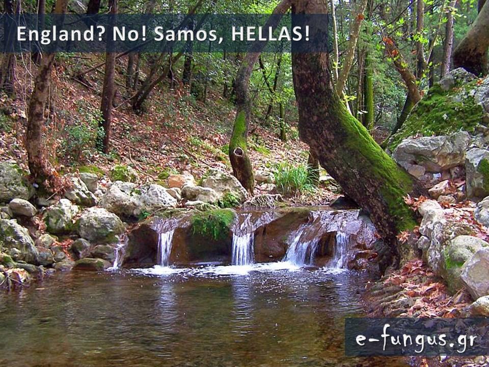 tilestwra.gr : 321 Υπάρχει Παράδεισος στη γη; ΥΠΑΡΧΕΙ και βρίσκεται φυσικά στην Ελλάδα! Δείτε τον...