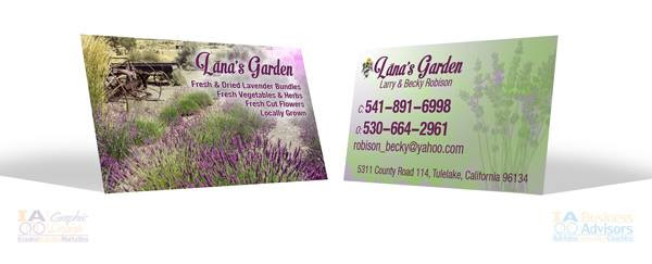 Lana Card Ia Business Advisors