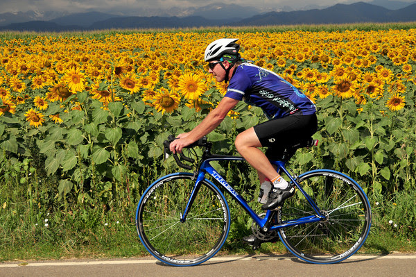 Sunflower Cycling