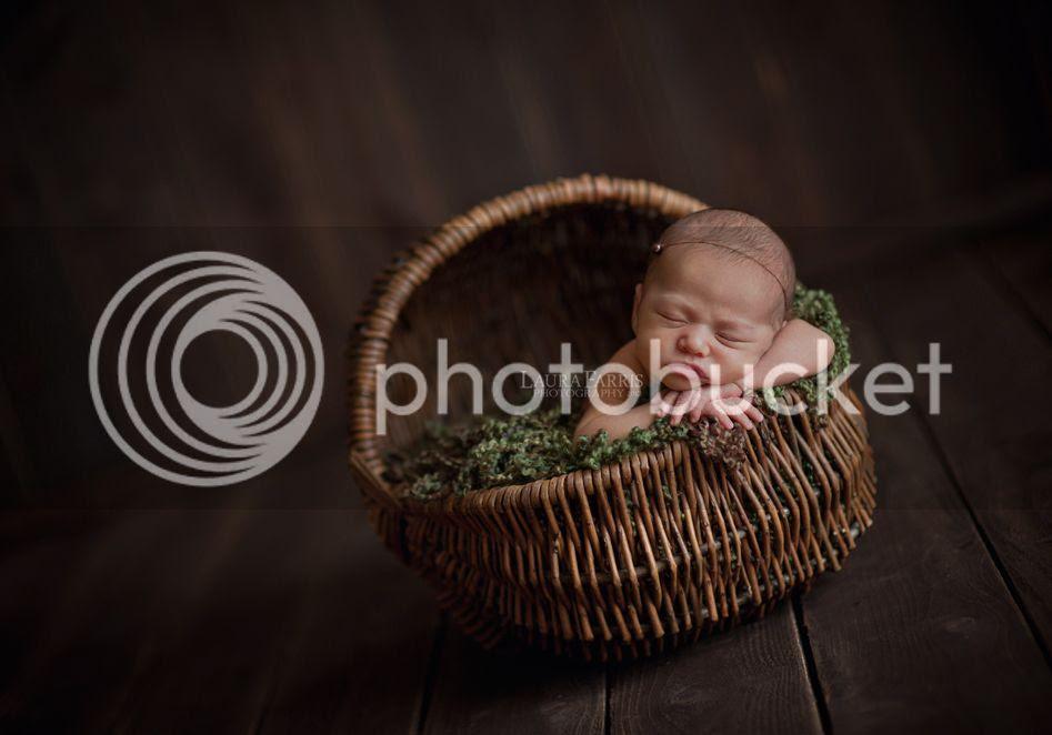 meridian idaho newborn photographers